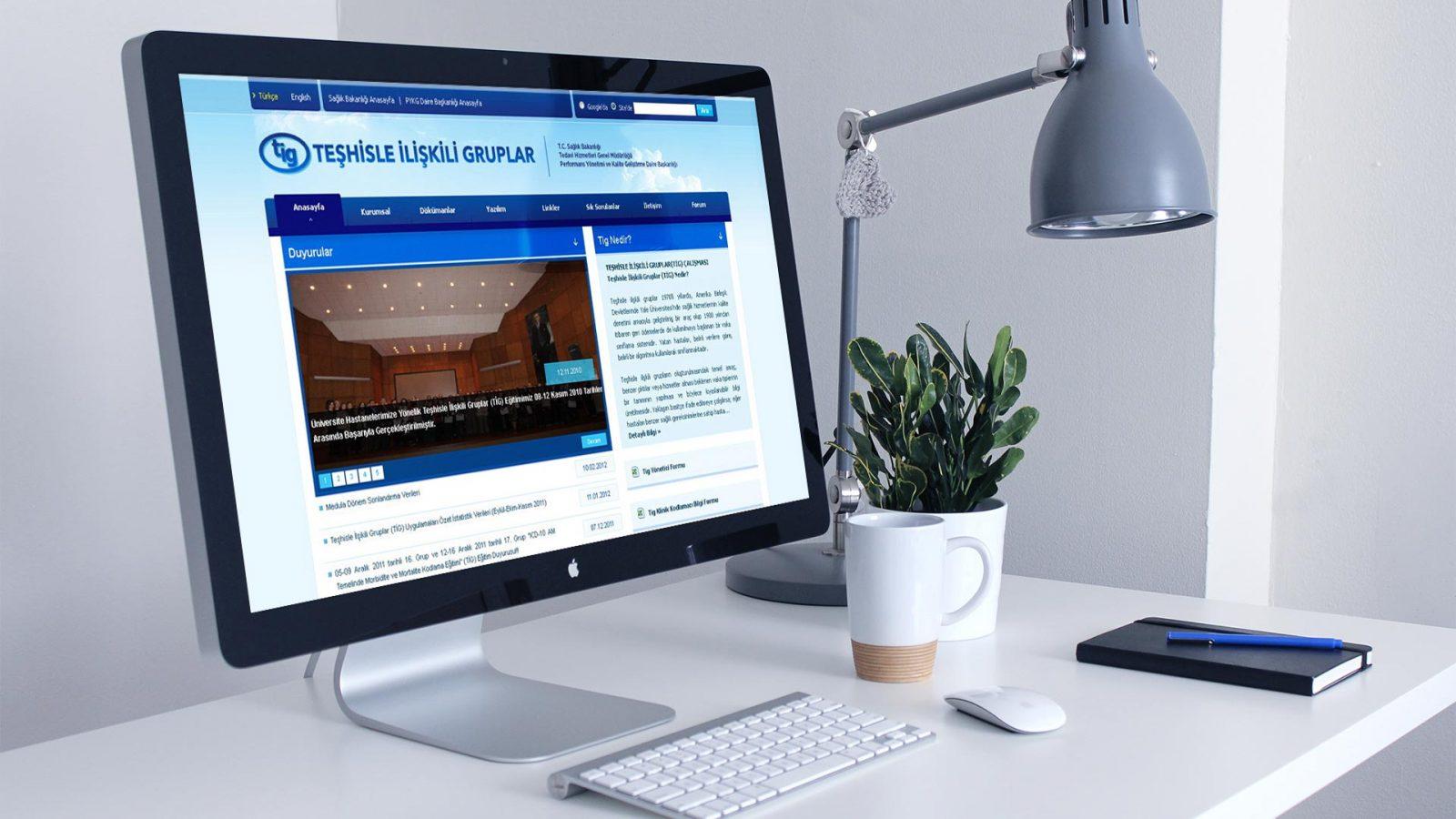 tig web sitesi tasarımı 03