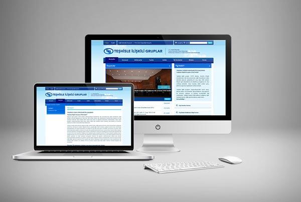 TİG Web Sitesi Tasarımı