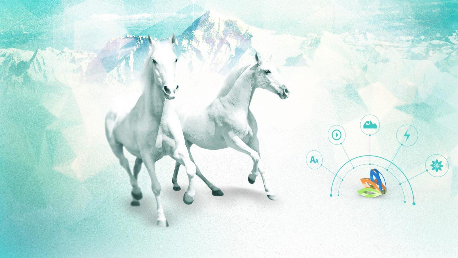aktay.net web sitemiz yenilendi