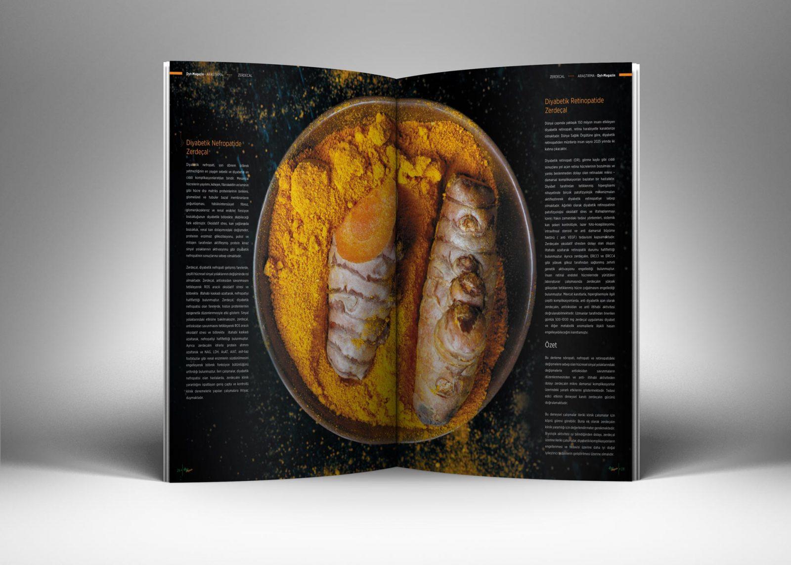 DytMagazin Dergi Tasarımı 05