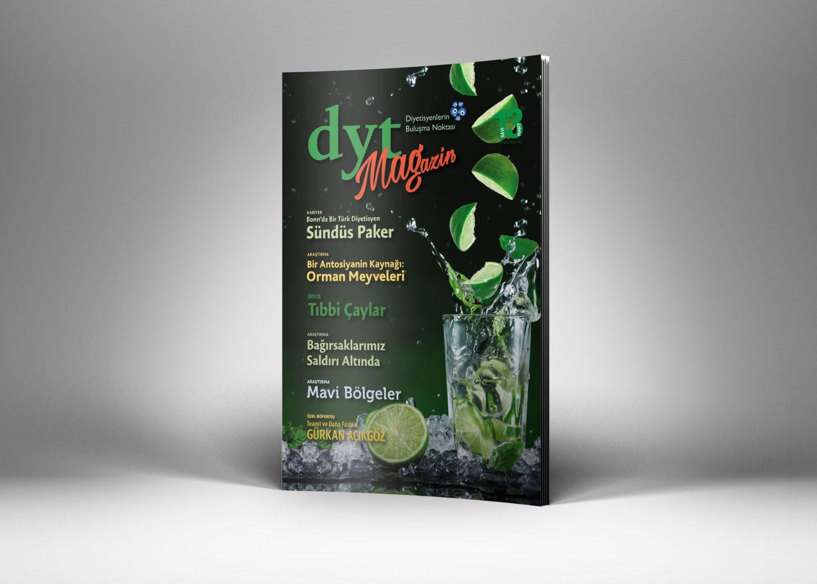 DytMagazin Dergi Tasarımı Sayı 13