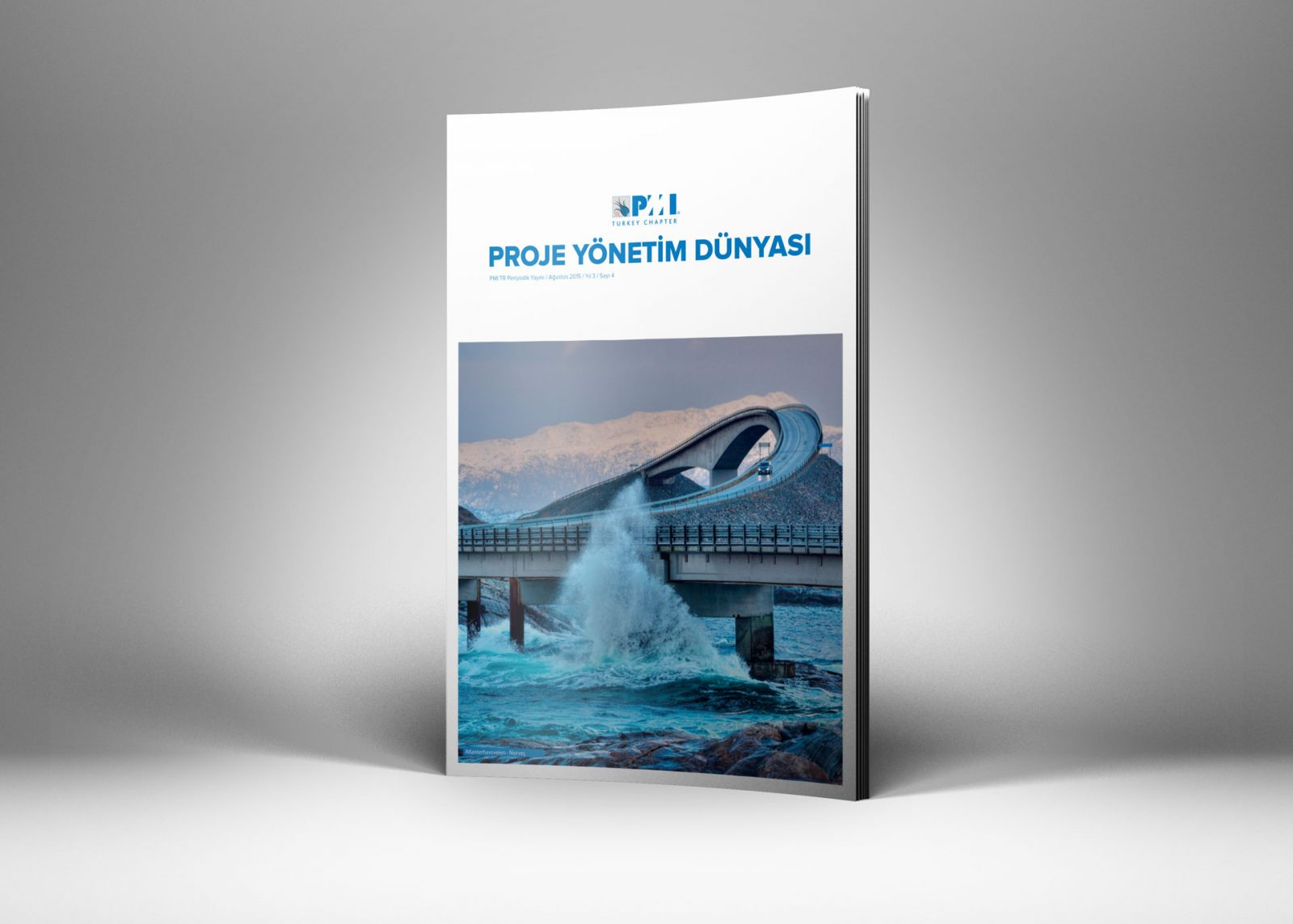 pmi tr dergi tasarımı sayı 4